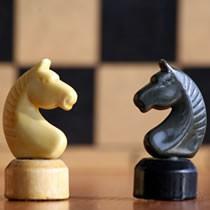 Приглашает мальчиков и девочек в возрасте от 7 лет принять участие в соревнованиях по шахматам 10 февраля 2014 г.