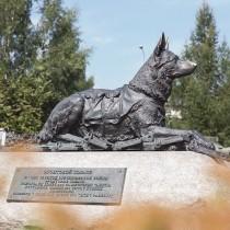 Музей Победы пригласил на онлайн-программу о подвигах фронтовых собак
